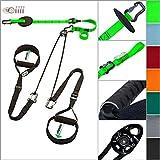 eaglefit  Sling-Trainer EXCLUSIVE elastic Alu, Fitness-Gerät, Schlingentrainer inkl. Umlenkrolle &...