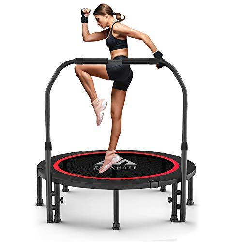 ZEHNHASE 101CM/40 Inch Fitness Trampolin, Trampolin faltbar, Indoor Erwachsen Trampolin Faltbar...
